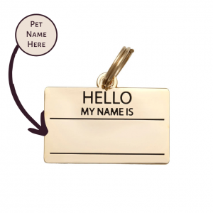 Pet ID Tag – Hello My Name is Blank – Gold