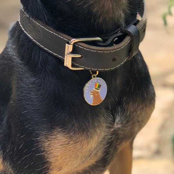love is love dog tag modeled