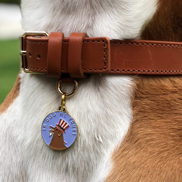 in dog we trust tag modeled