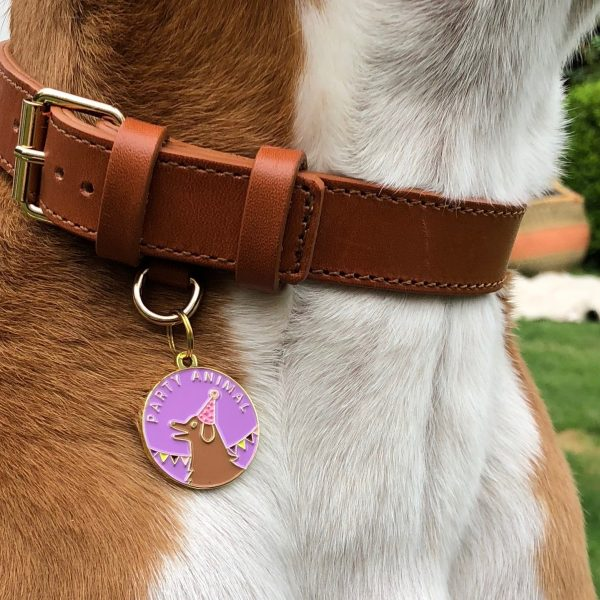party animal id tag modeled
